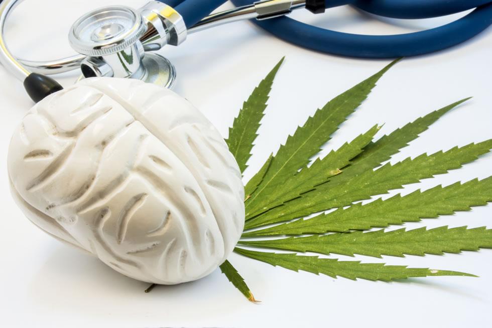 Marijuana Addiction – Top Three Good Reasons To Prevent Smoking Weed